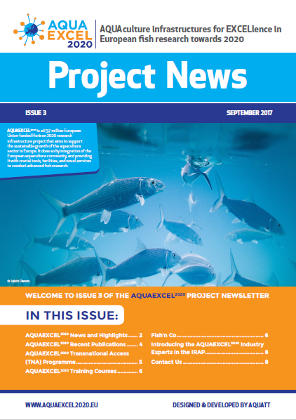 newsletter3 cover page